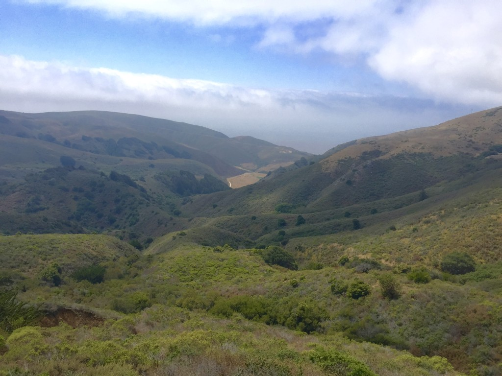 These beautiful hills are part of a land grant to a private family from the Mexican government in the early 1800s.